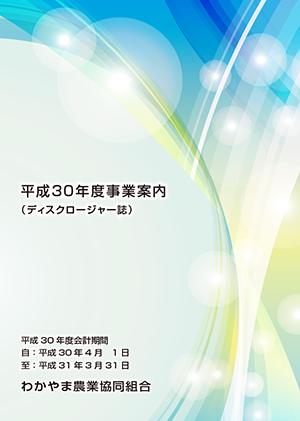 平成30年度事業案内(ディスクロージャー誌)